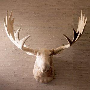 Z Gallerie Moose Head Restoration Hardware has some