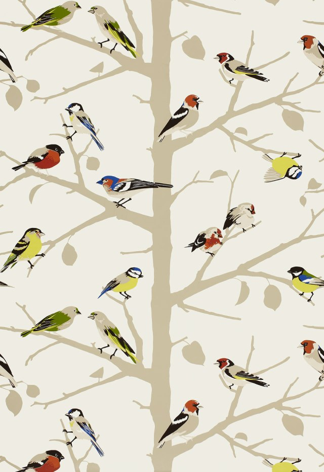 ATweet BirdWallpaper Schumacher