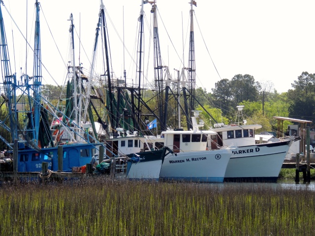 Shrimp boats, Shem Creek, Mt. Pleasant, SC