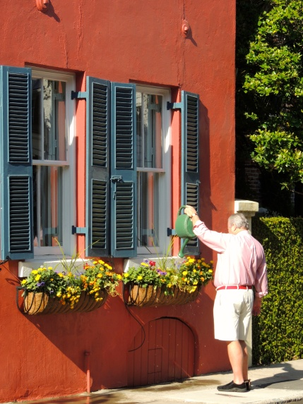 Man watering window boxes