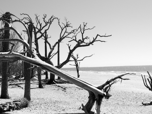 Botany Bay Beach