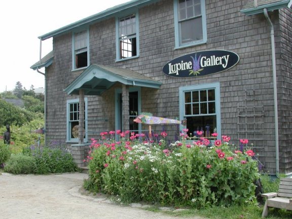 LupineGallery