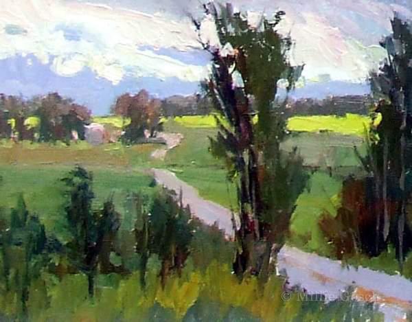 """""""Montana Canola Fields"""" by Millie Gosch"""