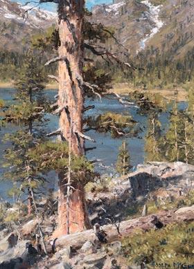 Sunlit Pines, Sierras by Joseph McGurl