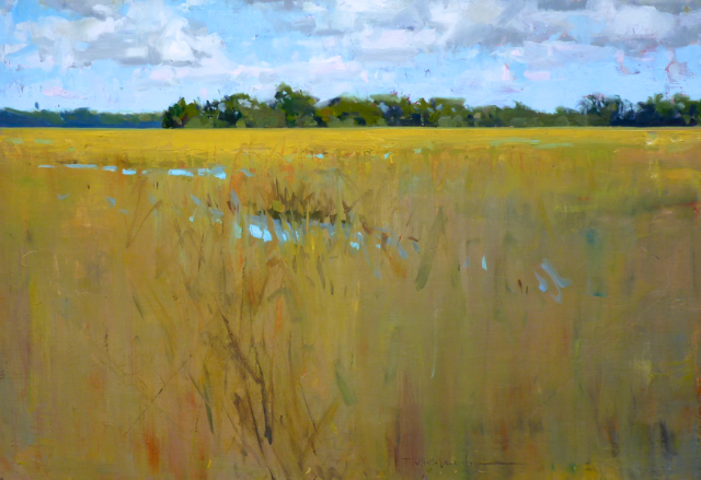 James Richards - Lost in the Marsh