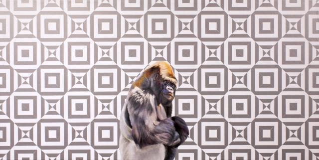 "A Gorilla Preceded the Illusion by Robert Lange 12x24"" Oil & Vinyl on Panel"
