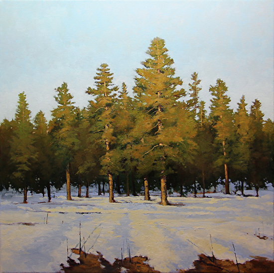 "Snowmelt Aspenglow by Shanna Kunz 36x36"" Oil"