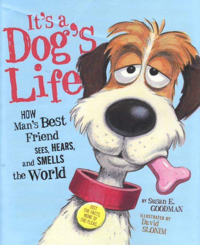 DavidSlonim Its A Dogs Life ds