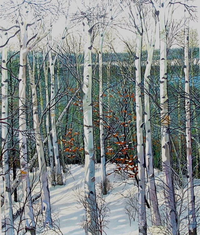 Winterbirches by Jane Dahmen