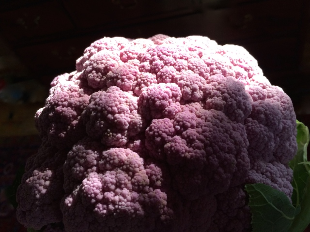 Purple Cauliflower | Art Food Home