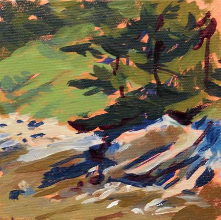 Tree and Shadow by Marsha Donahue
