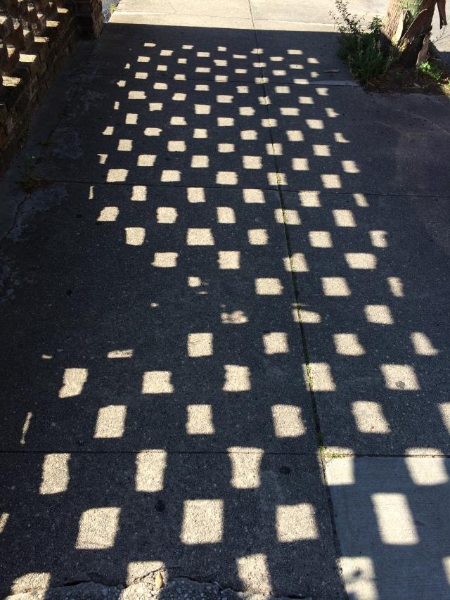 Checkerboard Shadow
