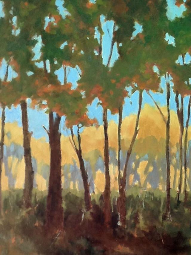 pinch-of-sunshine-by-donna-bland-36x24-oil