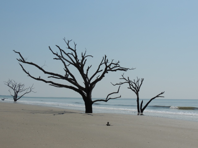 Botany Bay Beach, South Carolina