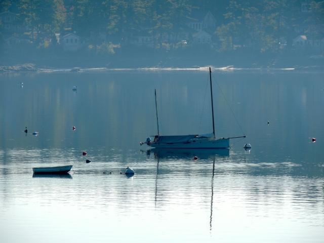 Calm Maine Water