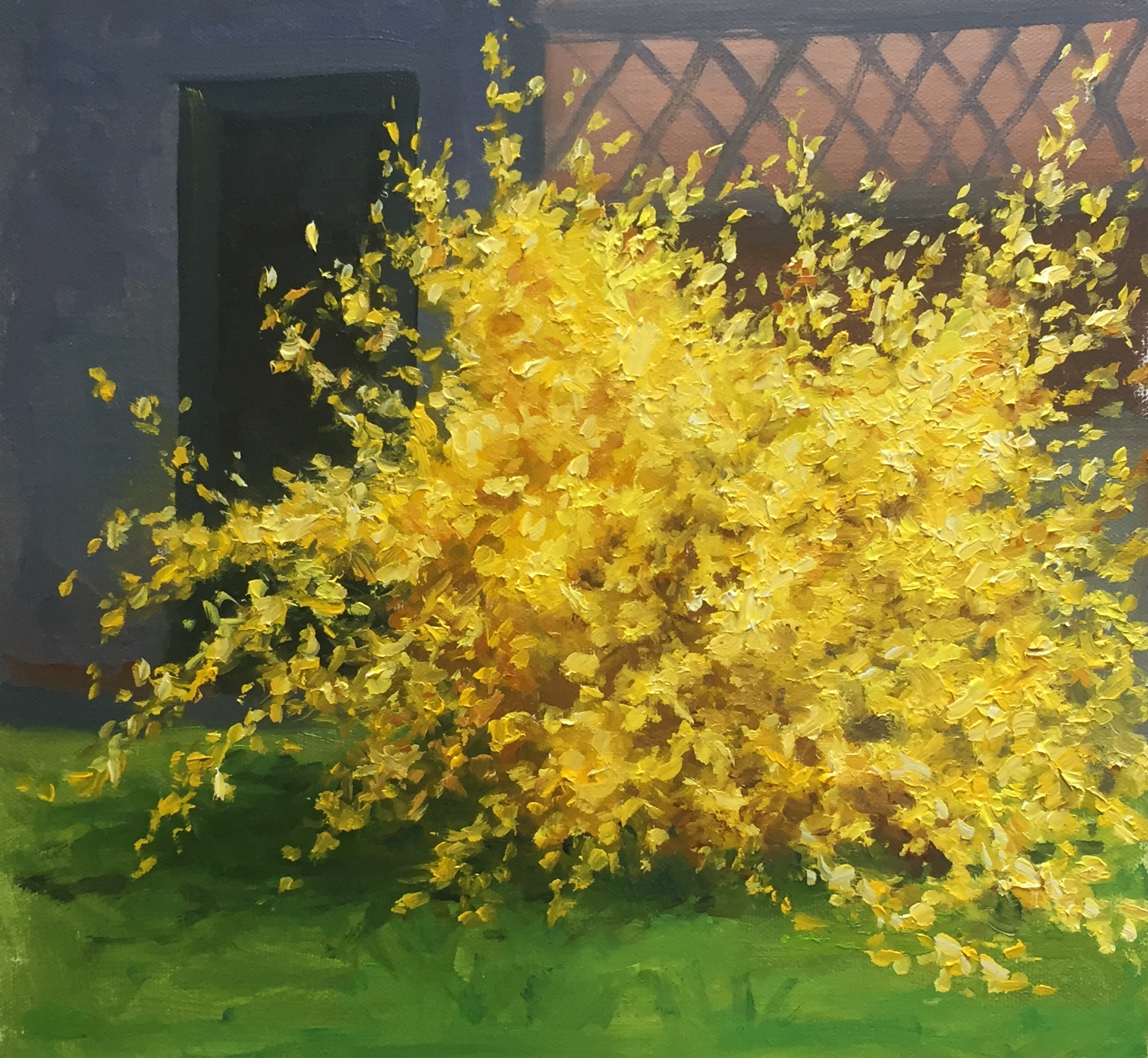 Forsythia by Amy Williams Beers
