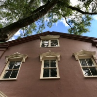 Charleston Photo - Looking up...