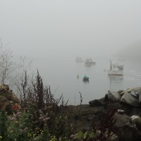 Monhegan in Fog...