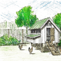 40th Anniversary Chicken Coop by Our Town Plans (For Country Living)