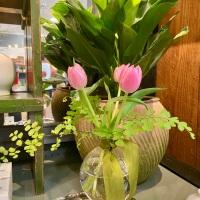 Spotlight: Abide A While Garden Boutique!